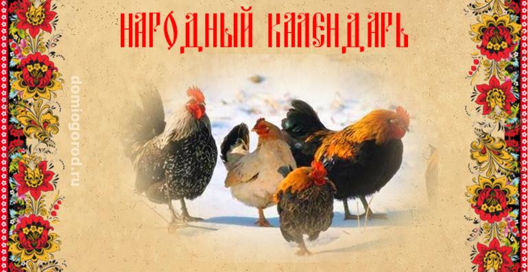 День Сильвестра, Куриный праздник