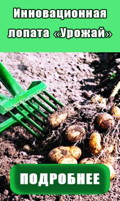 Инновационная лопата Урожай